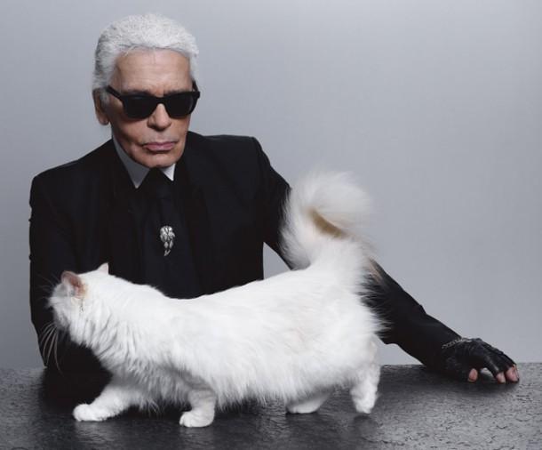 Karl Lagerfeld Reveals Choupette s Diary The Bonus Edition 610x506 Zlá cica, Choupette Lagerfeld, útočí