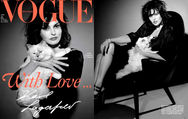 Vogue Germany July 2013 610x388 Zlá cica, Choupette Lagerfeld, útočí