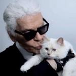 22052019 StajlSK Choupettee Lagerfeld 01 150x150 Štýlový život mačky Choupette Lagerfeld.