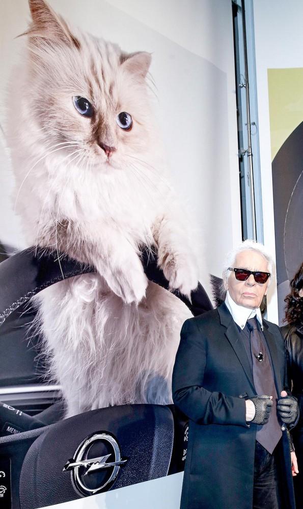 22052019 StajlSK Choupettee Lagerfeld 06 595x1000 Štýlový život mačky Choupette Lagerfeld.