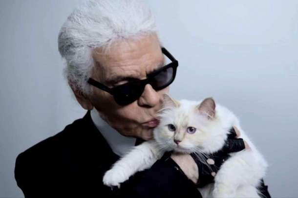 22052019 StajlSK Choupettee Lagerfeld 01 610x406 Štýlový život mačky Choupette Lagerfeld.