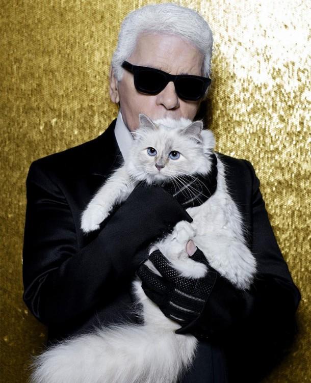 22052019 StajlSK Choupettee Lagerfeld 03 610x752 Štýlový život mačky Choupette Lagerfeld.