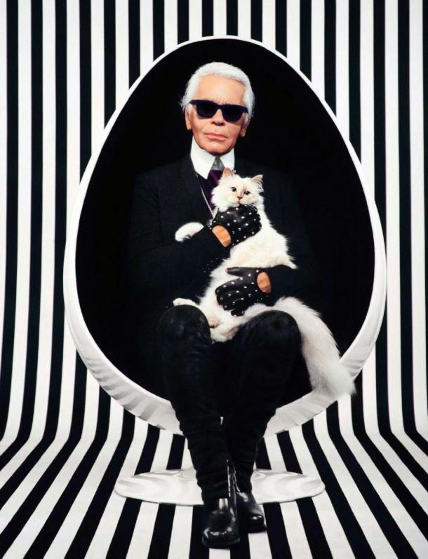 22052019 StajlSK Choupettee Lagerfeld 04 610x797 Štýlový život mačky Choupette Lagerfeld.
