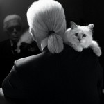 22052019 StajlSK Choupettee Lagerfeld 10 150x150 Štýlový život mačky Choupette Lagerfeld.