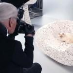 22052019 StajlSK Choupettee Lagerfeld 12 150x150 Štýlový život mačky Choupette Lagerfeld.
